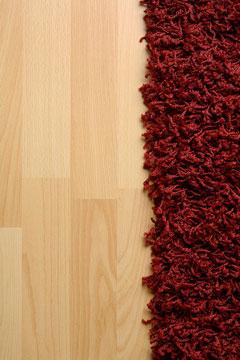 shag rug on laminate floor