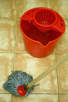 floor mop and bucket of cleaning solution